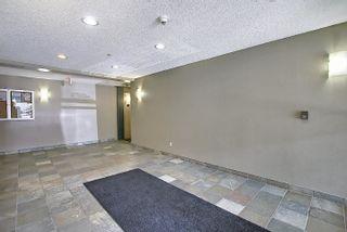 Photo 5: 201 4407 23 Street in Edmonton: Zone 30 Condo for sale : MLS®# E4254389