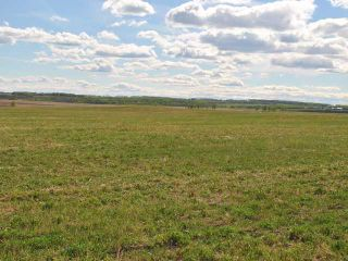 Photo 3: : Rural Mountain View County Land for sale : MLS®# C3641080