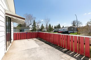Photo 4: 115 Huntwell Road NE in Calgary: Huntington Hills Detached for sale : MLS®# A1105726