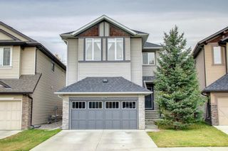 Photo 50: 68 Chaparral Valley Terrace SE in Calgary: Chaparral Detached for sale : MLS®# A1152687
