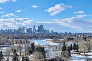 Photo 38: 119 2727 28 Avenue SE in Calgary: Dover Apartment for sale : MLS®# A1077846