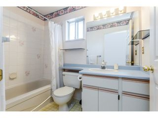 """Photo 16: 42 5550 LANGLEY Bypass in Langley: Langley City Townhouse for sale in """"RIVERWYND"""" : MLS®# R2270354"""