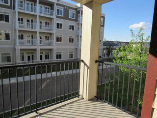Photo 28: 213 5804 MULLEN Place in Edmonton: Zone 14 Condo for sale : MLS®# E4222798
