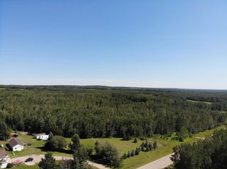 Photo 6: 50 Ave RR 281: Rural Wetaskiwin County Rural Land/Vacant Lot for sale : MLS®# E4191216