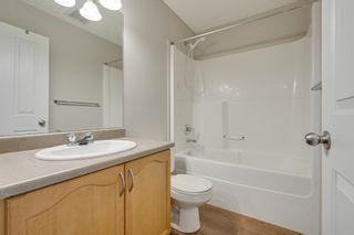 Photo 45: 20235 56 Ave NW: Edmonton House Duplex for sale : MLS®# E4238994