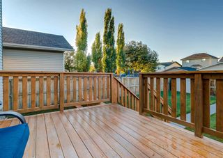 Photo 50: 103 DOHERTY Close: Red Deer Detached for sale : MLS®# A1147835