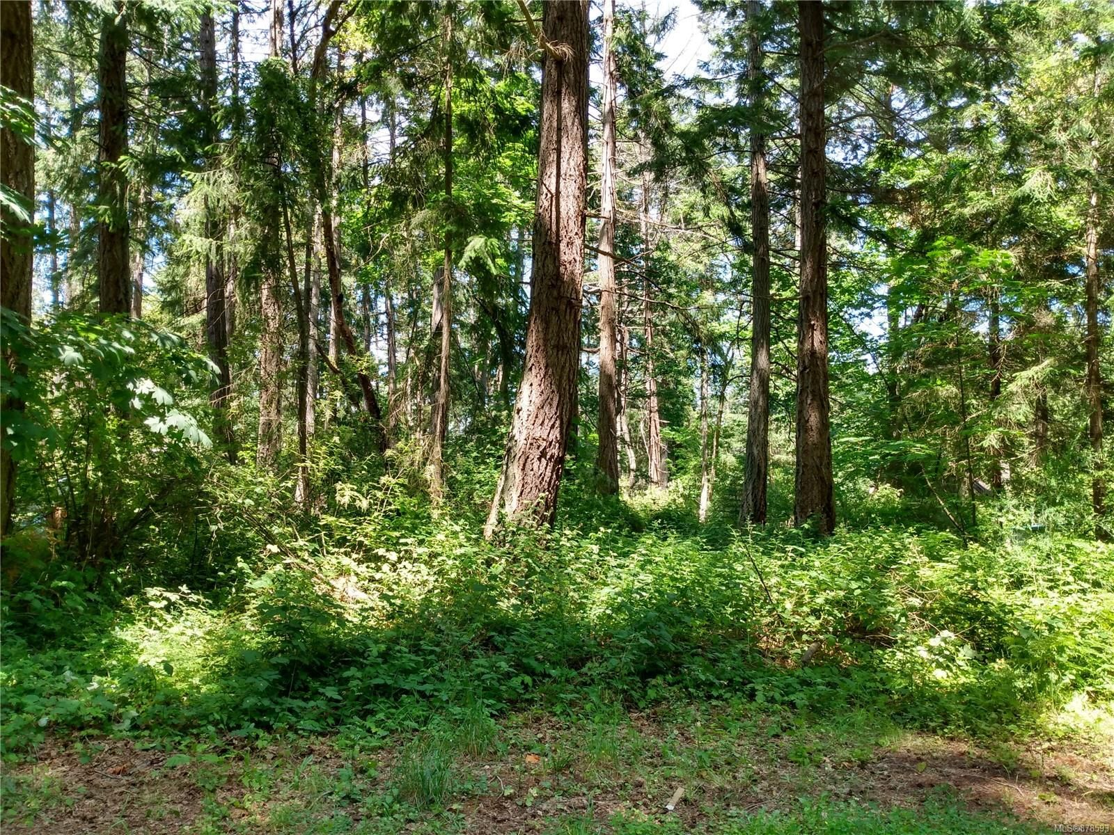 Main Photo: 20 Pirate Pl in : Isl Protection Island Land for sale (Islands)  : MLS®# 878593