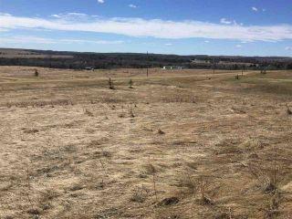 Photo 4: 16 River Ridge Estates: Rural Wetaskiwin County Rural Land/Vacant Lot for sale : MLS®# E4253383