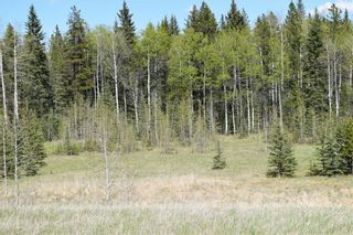 Photo 9: TWP Rd 310: Rural Mountain View County Land for sale : MLS®# C4292828