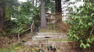 Photo 50: 1541 Croation Rd in Campbell River: CR Campbell River Central House for sale : MLS®# 870733