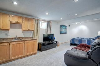 Photo 23: 223 Springborough Way SW in Calgary: Springbank Hill Detached for sale : MLS®# A1114099