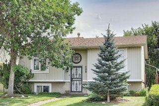 Photo 1: 108 Fallswater Road NE in Calgary: Falconridge Detached for sale : MLS®# A1133695