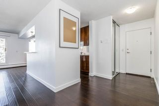 Photo 6: 401C 4455 Greenview Drive NE in Calgary: Greenview Apartment for sale : MLS®# A1052674