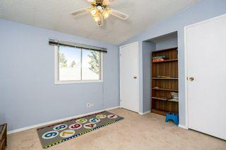 Photo 29:  in Edmonton: Zone 29 House for sale : MLS®# E4248358