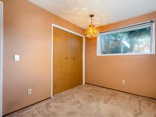 Photo 19: 239 Pinemill Road NE in Calgary: Pineridge Detached for sale : MLS®# A1021035