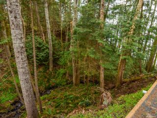Photo 27: 4651 Maple Guard Dr in BOWSER: PQ Bowser/Deep Bay House for sale (Parksville/Qualicum)  : MLS®# 811715
