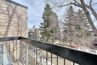 Photo 31: 306 315 Heritage Drive SE in Calgary: Acadia Apartment for sale : MLS®# A1090556