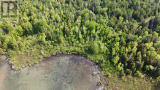 Photo 12: PT LT 58, Con 1 Manitou Shores in Assiginack: Vacant Land for sale : MLS®# 2095659