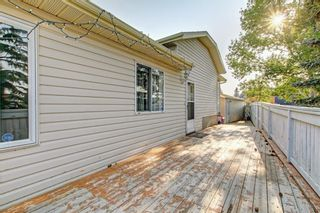 Photo 40: 25 Martinview Crescent NE in Calgary: Martindale Detached for sale : MLS®# A1107227