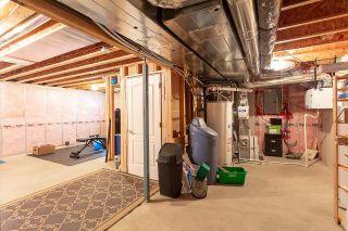 Photo 31: 12223 171 Avenue in Edmonton: Zone 27 House for sale : MLS®# E4248597