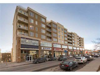 Photo 1: 613 3410 20 Street SW in Calgary: South Calgary Condo for sale : MLS®# C3651168