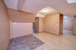 Photo 34: 172 ERIN MEADOW Way SE in Calgary: Erin Woods Detached for sale : MLS®# A1028932