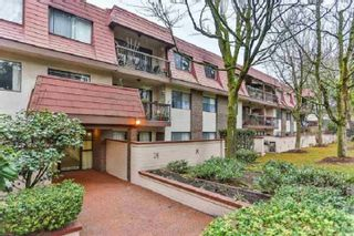 "Main Photo: 206 3925 KINGSWAY Street in Burnaby: Central Park BS Condo for sale in ""CHAUCER HALL"" (Burnaby South)  : MLS®# R2554364"