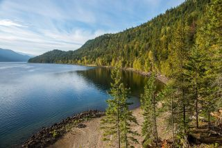 Photo 6: Lot 7879 HIGHWAY 31 in Kaslo: Vacant Land for sale : MLS®# 2461475