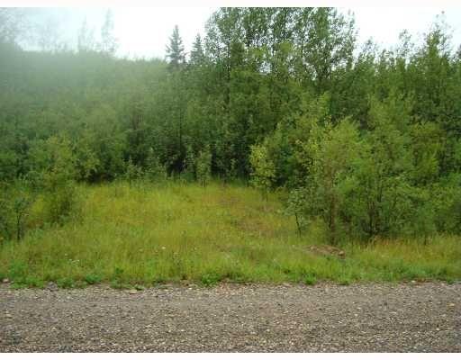 """Main Photo: LOWER CACHE RD in Fort_St._John: Fort St. John - City SW Land for sale in """"LOWER CACHE ROAD"""" (Fort St. John (Zone 60))  : MLS®# N186668"""