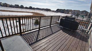 Photo 15: 87 John Mann Place in Winnipeg: North Kildonan Residential for sale (North East Winnipeg)  : MLS®# 1203969