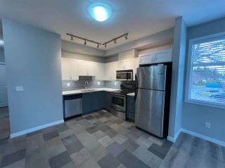 """Photo 9: 211 2511 KING GEORGE Boulevard in Surrey: King George Corridor Condo for sale in """"PACIFICA"""" (South Surrey White Rock)  : MLS®# R2562208"""