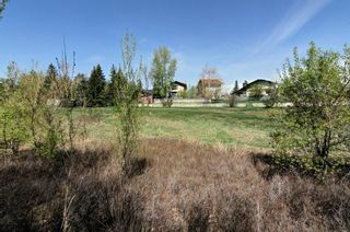 Photo 4: 56 MACEWAN GLEN Drive NW in Calgary: MacEwan Glen House for sale : MLS®# C4173721