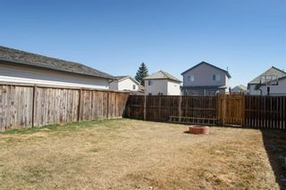 Photo 28: 26 Mt Aberdeen Link SE in Calgary: McKenzie Lake Detached for sale : MLS®# A1095540