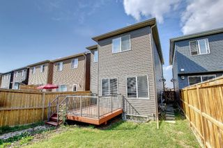Photo 34: 132 Evansborough Way NW in Calgary: Evanston Detached for sale : MLS®# A1145739
