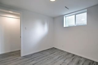 Photo 29: 2415 Vista Crescent NE in Calgary: Vista Heights Detached for sale : MLS®# A1144899