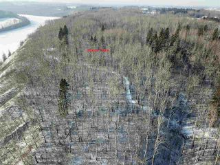 Photo 9: 50322 Rge Road 10: Rural Parkland County Rural Land/Vacant Lot for sale : MLS®# E4247117