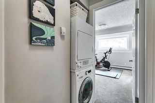 Photo 27: 8 515 18 Avenue SW in Calgary: Cliff Bungalow Apartment for sale : MLS®# A1117103