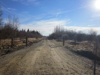Photo 14: NW 24-54 RR 131: Niton Junction Rural Land for sale (Edson)  : MLS®# 32590