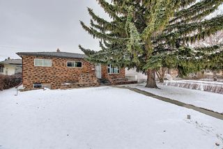 Photo 28: 2335 53 Avenue SW in Calgary: North Glenmore Park Detached for sale : MLS®# A1083978