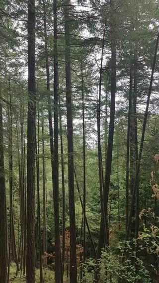 Photo 6: Lot 47 FLINT Road: Keats Island Land for sale (Sunshine Coast)  : MLS®# R2410362