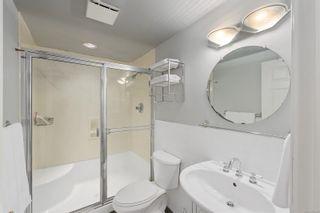 Photo 36: 4056 Tyne Crt in : SE Mt Doug House for sale (Saanich East)  : MLS®# 878262