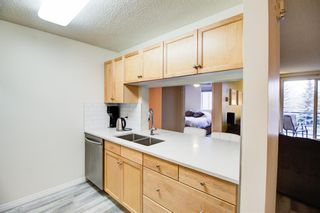 Photo 9: 209 2022 CANYON MEADOWS Drive SE in Calgary: Queensland Apartment for sale : MLS®# A1028544