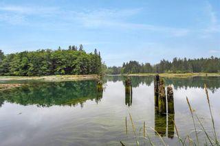Photo 28: 16706 Parkinson Rd in Port Renfrew: Sk Port Renfrew Land for sale (Sooke)  : MLS®# 882036
