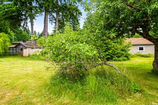 Photo 16: 3508 S Island Hwy in Courtenay: CV Courtenay South House for sale (Comox Valley)  : MLS®# 888292