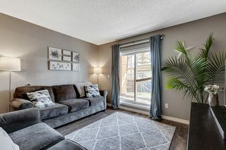 Photo 11: 1105 115 PRESTWICK Villas SE in Calgary: McKenzie Towne Apartment for sale : MLS®# A1100245