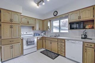 Photo 14: 166 Havenhurst Crescent SW in Calgary: Haysboro Detached for sale : MLS®# A1095089