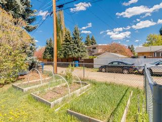 Photo 48: 5012 Bulyea Road NW in Calgary: Brentwood Detached for sale : MLS®# C4224301