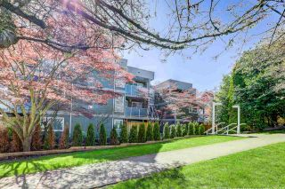 Photo 19: 209 518 THIRTEENTH STREET in New Westminster: Uptown NW Condo for sale : MLS®# R2257998