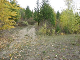 Photo 19: 80 Acres Creighton Valley Road, in Lumby: Vacant Land for sale : MLS®# 10239894