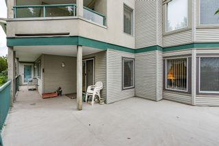 Photo 17: 120 2451 Gladwin in Abbotsford: Abbotsford West Condo for sale : MLS®# R2414045